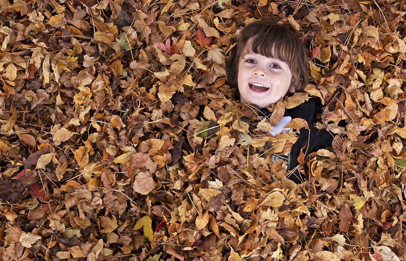 Plenty of property for fall fun at all ages (who doesn't love the smell of autumn!?)